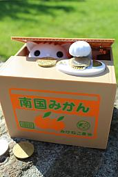 Hucha Kitty Bank