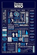 Póster Doctor Who Infographic (Ref. 31)