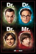 The Big Bang Theory póster Dr. Mr. (Ref. 55)